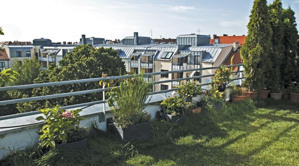 Ein grüner Dachgarten über der Stadt