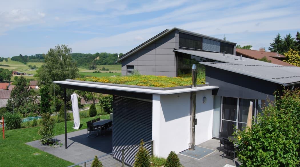 Ein freistehendes Haus mit Dachbegrünung auf einem Flachdach