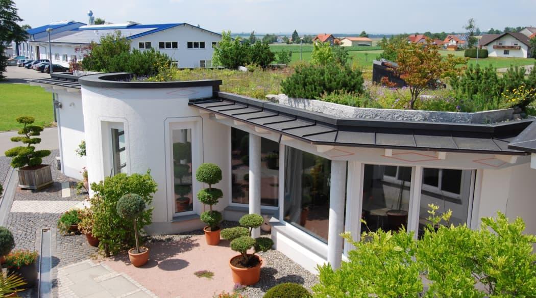 Ein weißes Wohnhaus mit Garten und grünem Naturdach