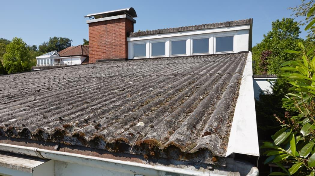 Mit Moos bewachsene alte Wellplatten eines Daches.
