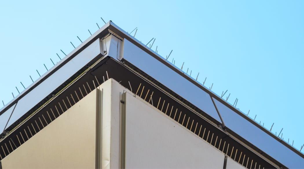 Ein Dach mit Vogelspikes
