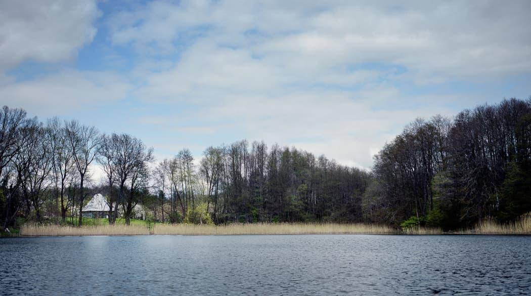 Thomas Kröger Architekten: der Pavillon am See in der Uckermark aus der Ferne