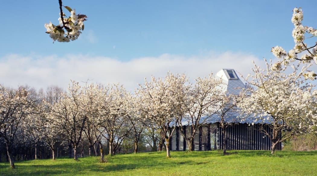 Thomas Kröger Architekt: der Pavillon am See in der Uckermark aus der Nähe
