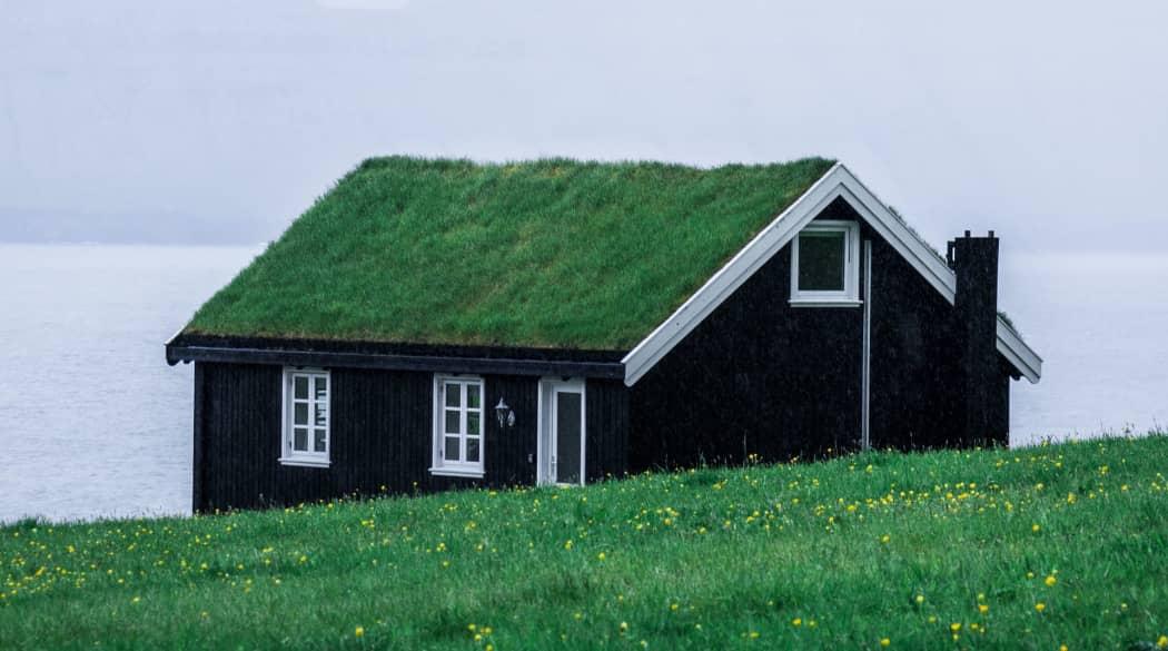 Satteldach: ein dunkles Holzhaus mit grasbewachsenem Dach