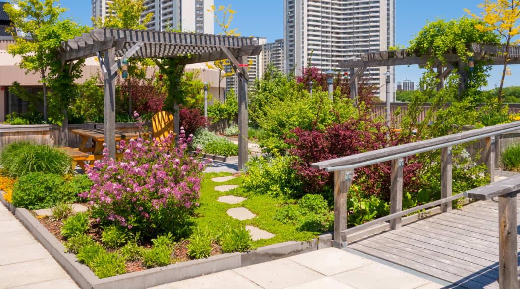 Dachbegrünung Pflanzen: ein Dachgarten in einer Großstadt