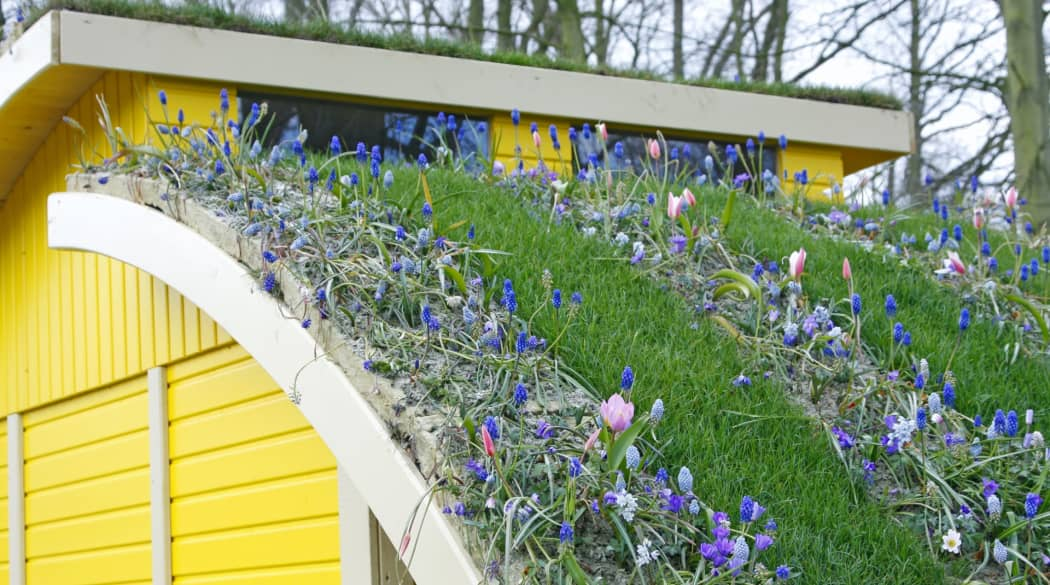 Dachbegrünung Pflanzen: Ein gelbes Haus mit Bogendach, das voller Blumen ist