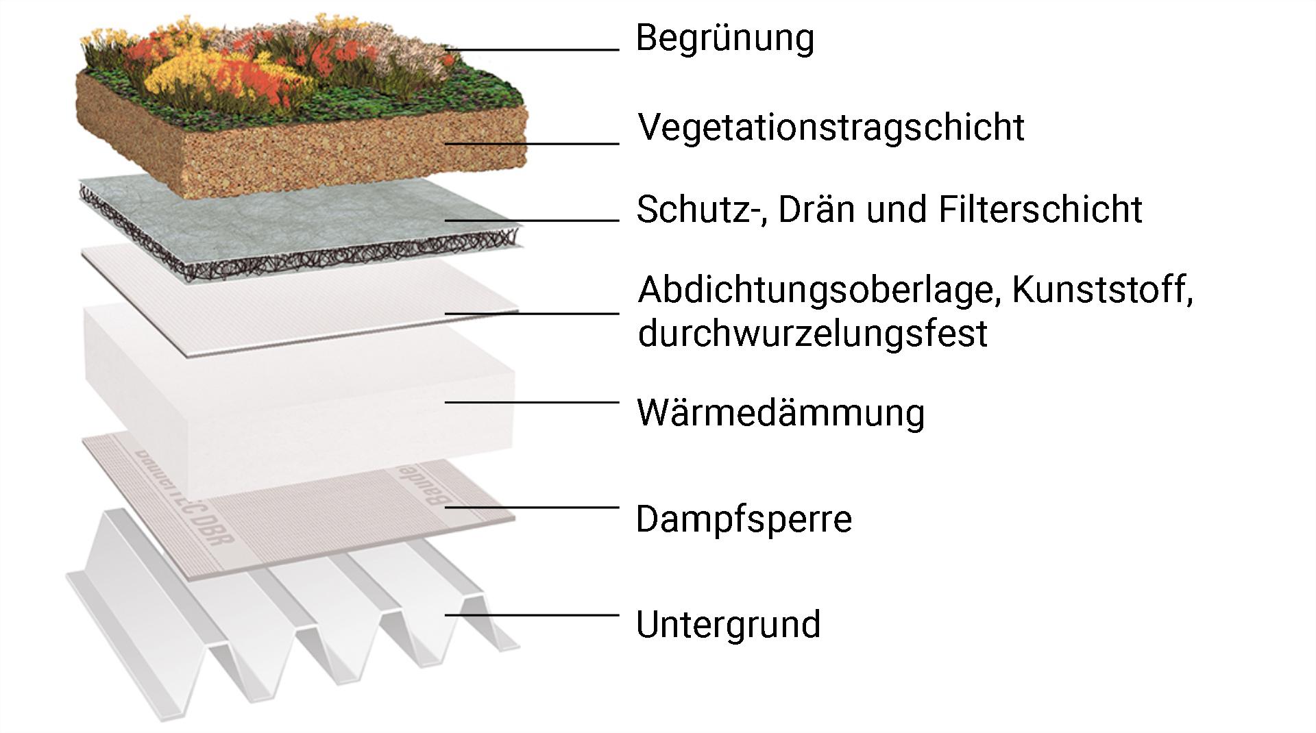 schematische Darstellung des Aufbaus einer Dachbegrünung
