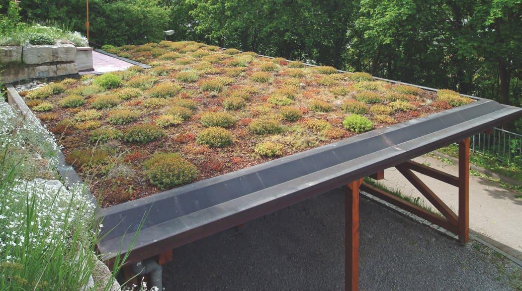 Schichtaufbau bei der Dachbegrünung: hier ein Carport mit begrüntem Flachdach