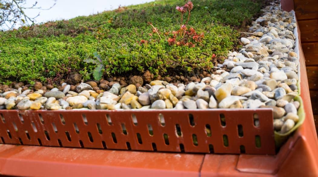 Der Schichtaufbau bei der Dachbegrünung: hier von Nahem ein Gründach mit Kies und Kiesfangleiste