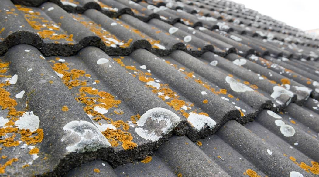 Dachbeschichtung: ein altes Dach mit dunklen Ziegeln voller Flechten