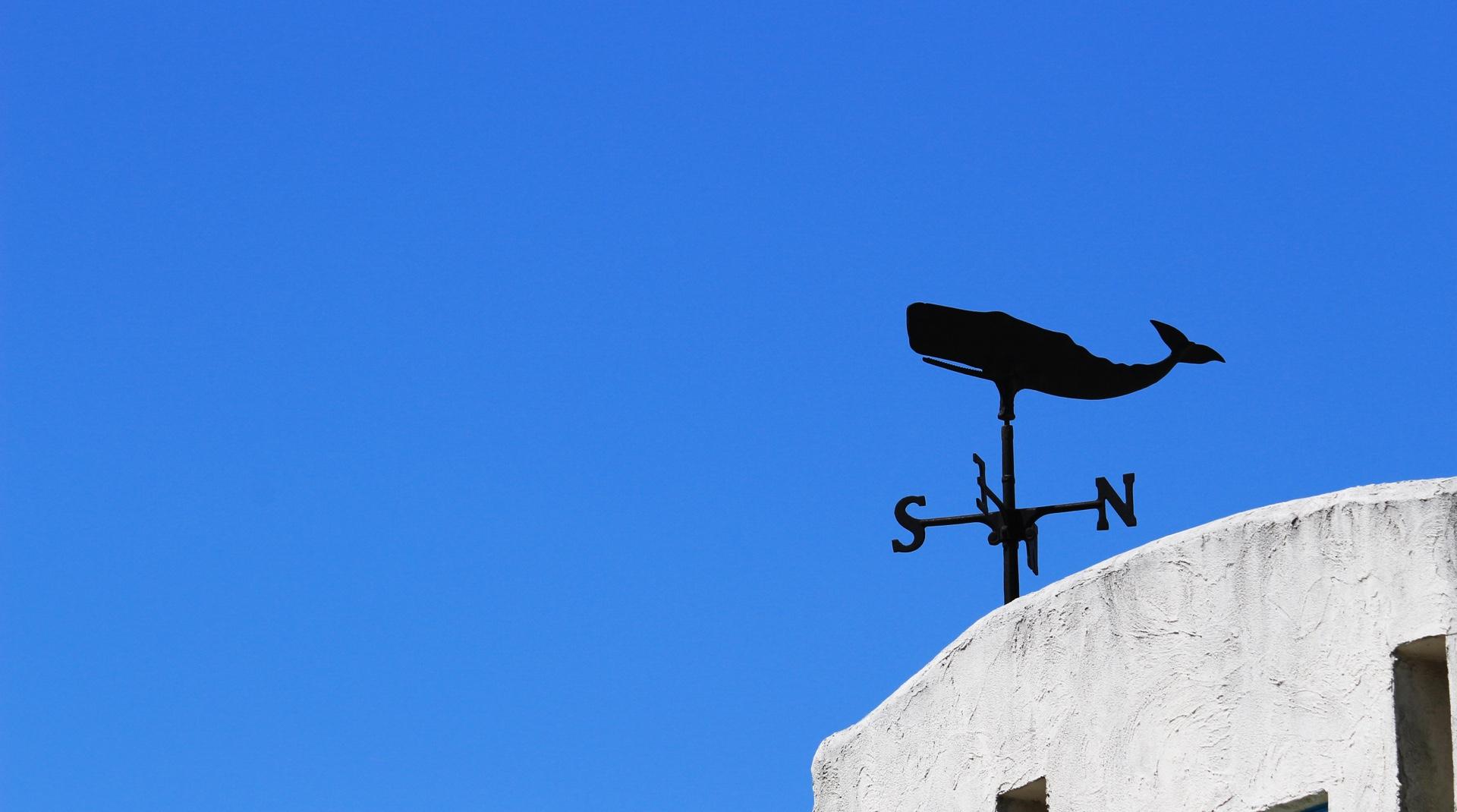 Dachschmuck: eine Wetterfahne mit einem Pottwal