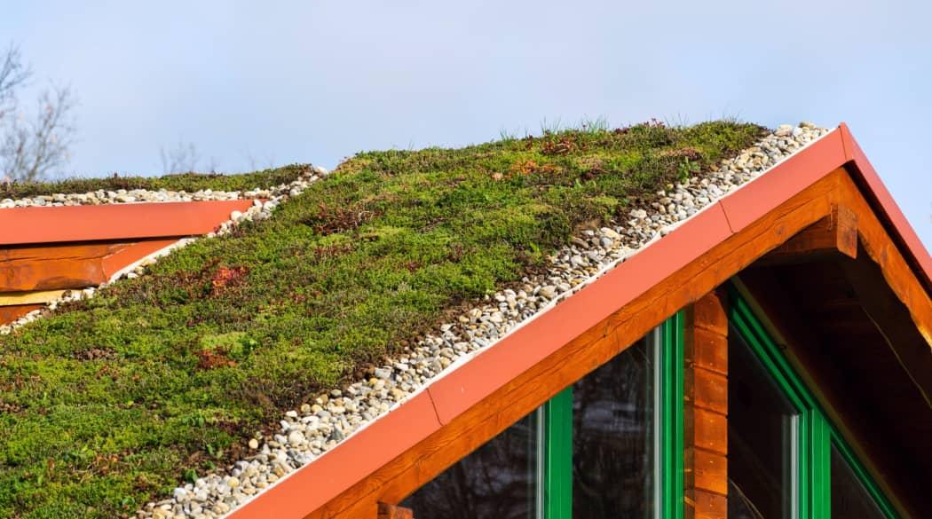 Dacharbeiten Jahresplaner: ein Haus mit Gründach im Frühling