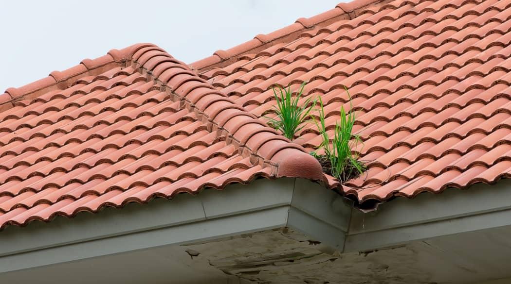 Dacharbeiten Jahresplaner: ein Dach mit roten Ziegeln und Wasserschäden an der Unterseite des Dachüberstandes
