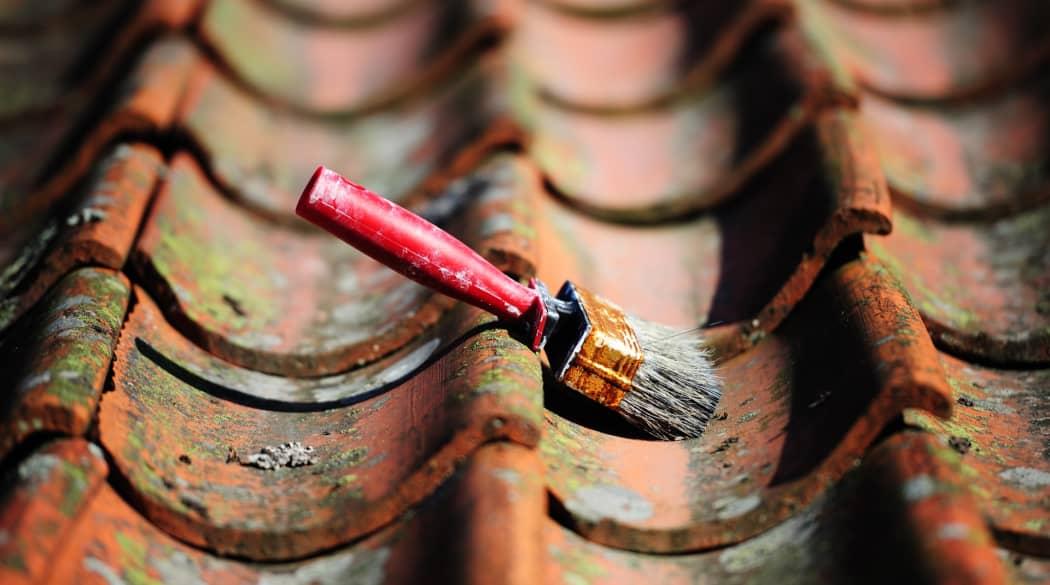 Dachwartung: ein roter, breiter Bürstenpinsel liegt auf einem Dach mit roten, moosbewachsenen Ziegeln