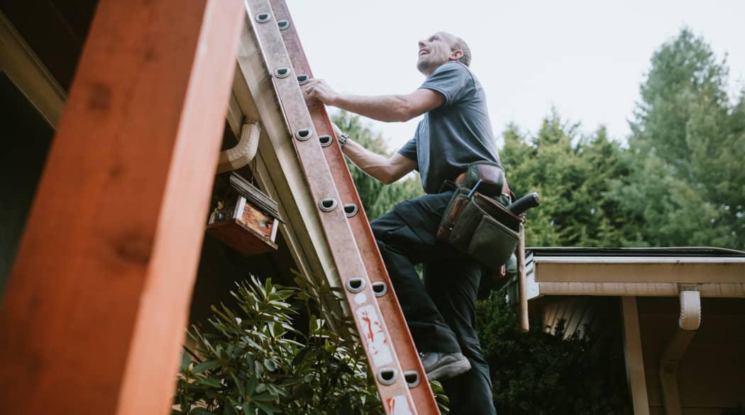 Dachwartung: ein Mann steht auf einer Leiter und schaut zum Dach hinauf